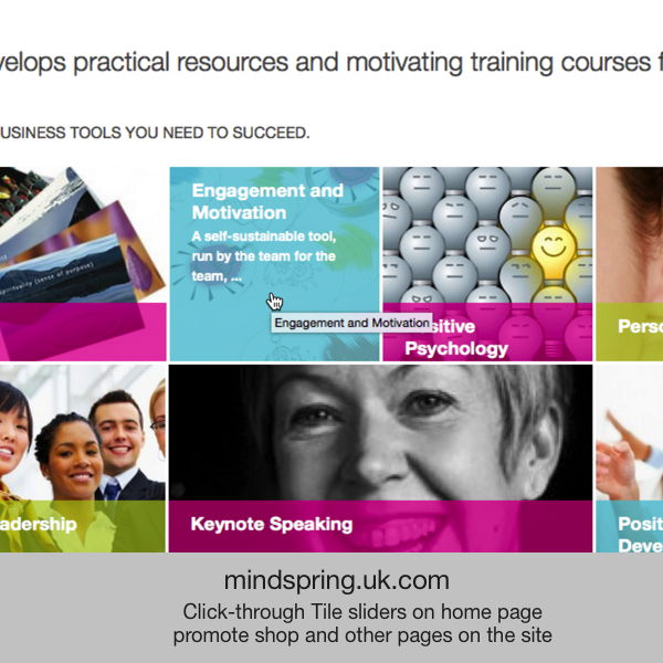 Mindspring - coaching & training
